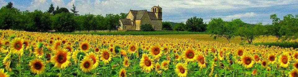 V_www.francecomfort.com_Dordogne_luxe_vakantiepark_Frankrijk-960x250-crop-fff